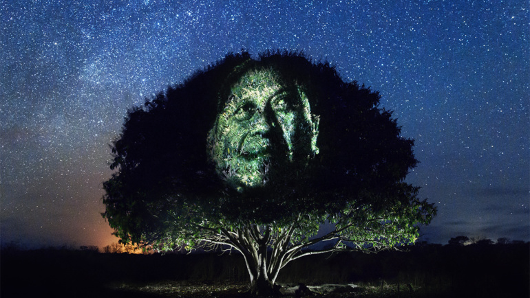 Exposition photo #art4trees – Street'Art dans la Jungle Maya