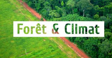 Préservons les forêts pour le climat !