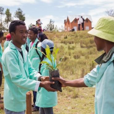 Reboiser des espèces endémiques à Madagascar