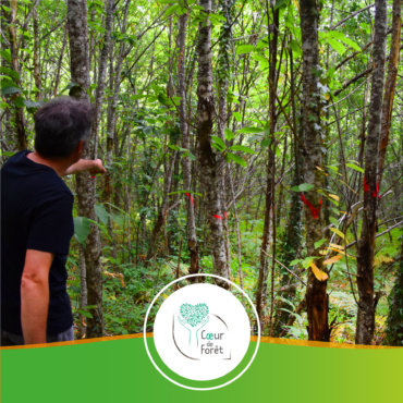 🇫🇷 France – Projet de préservation de la forêt dans le Lot