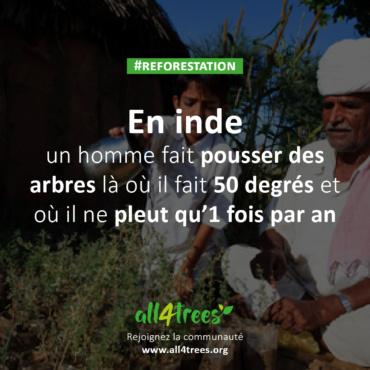 En Inde, l'homme qui fait pousser des arbres là où il fait 50 degrés et où il ne pleut qu'une fois par an