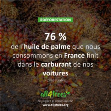 76 % de l'huile de palme est dans nos carburants