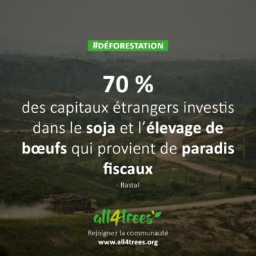 Comment l'évasion fiscale contribue à la surpêche et à la déforestation