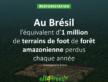 Déforestation au Brésil : l'équivalent d'un million de terrains de foot perdus en un an