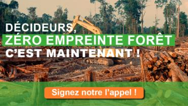 Décideurs, Zéro Empreinte Forêt c'est maintenant !