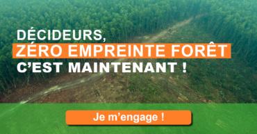 Zéro Empreinte Forêt