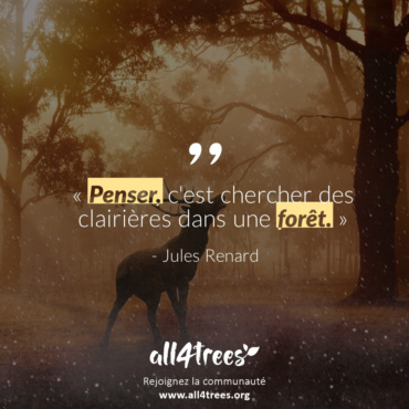 Citation #2 – Arbre & Forêt