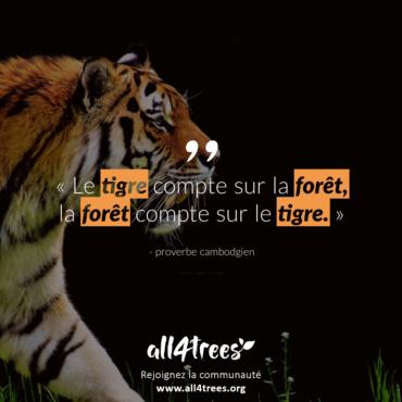 Citation #4 – Arbre & Forêt