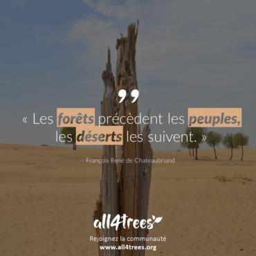 Citation #7 – Arbre & Forêt
