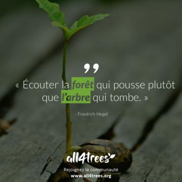 Citation #9 – Arbre & Forêt