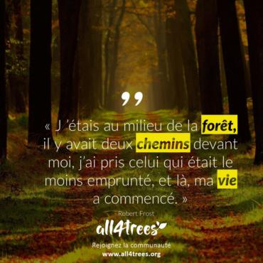 Citation #12 – Arbre & Forêt