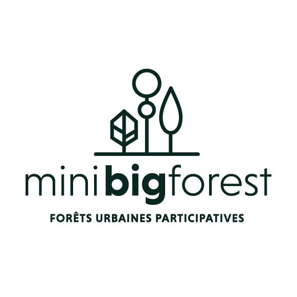 MiniBigForest