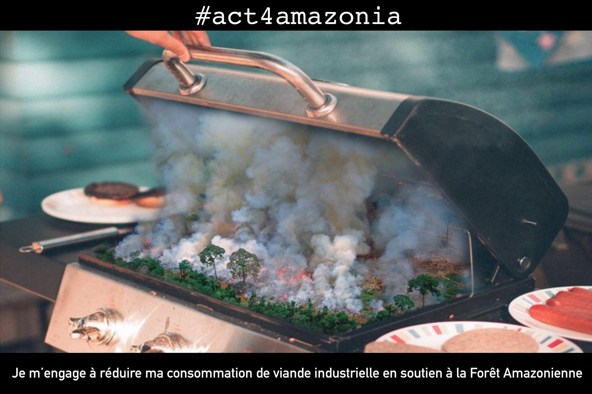 #act4amazonia