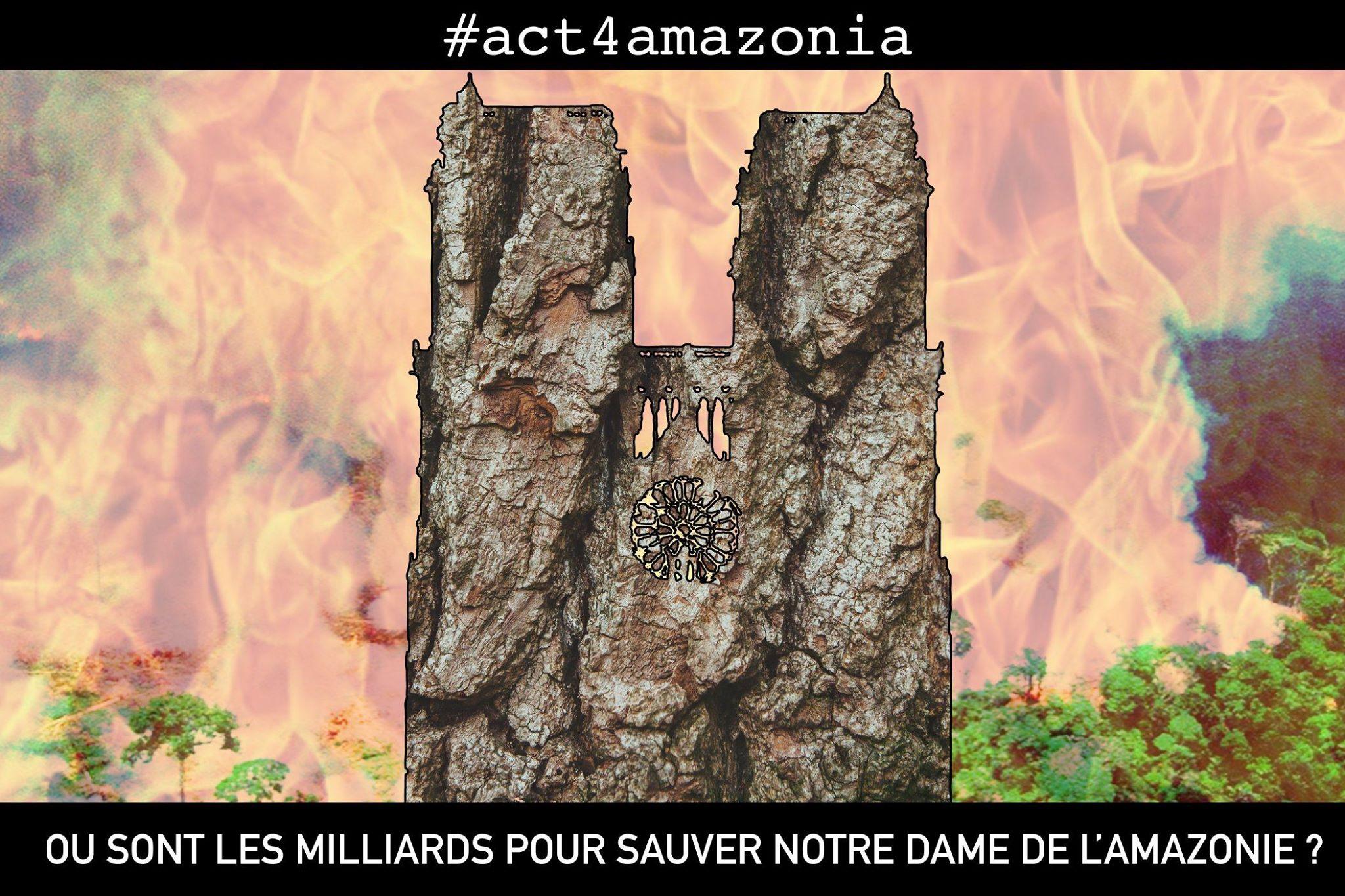 #act4amazonie
