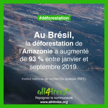 Brésil : la déforestation en Amazonie a augmenté de 93 % entre janvier et septembre