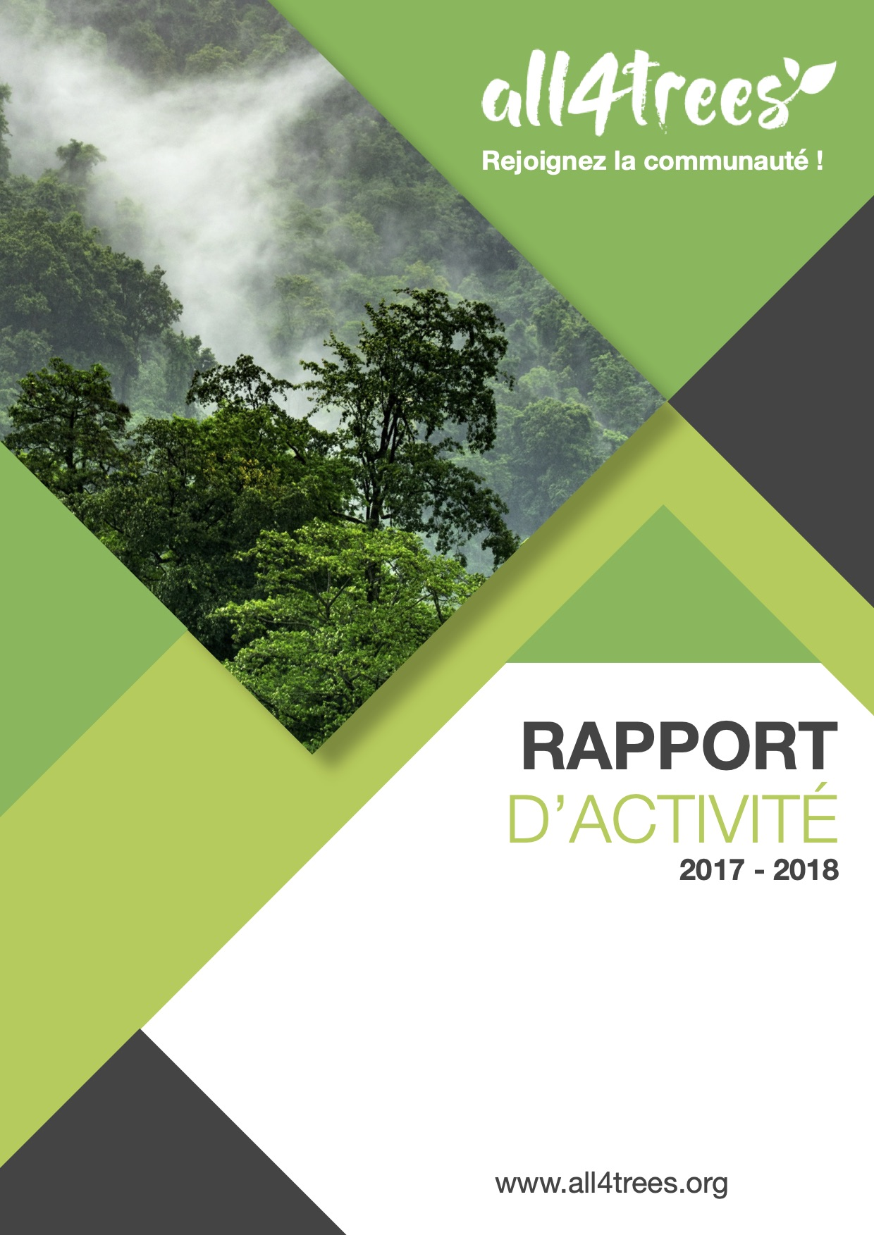 rapport activite association all4trees
