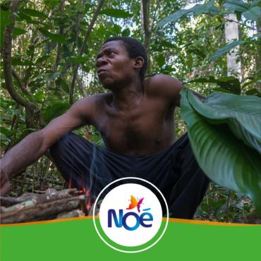 🇨🇲 Cameroun – Projet de préservation des ressources forestières dans la réserve de la Biosphère de Dja