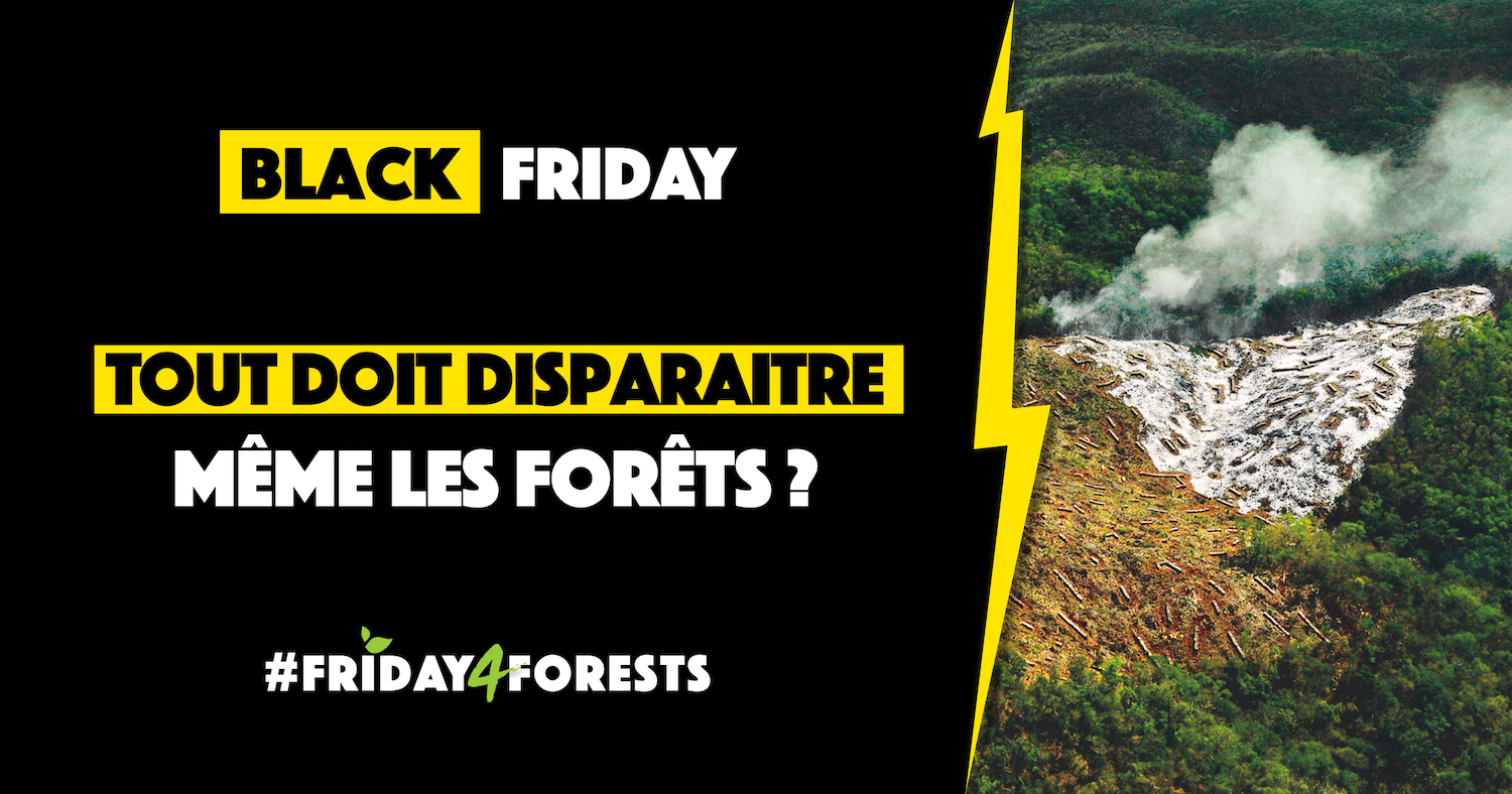 #friday4forests