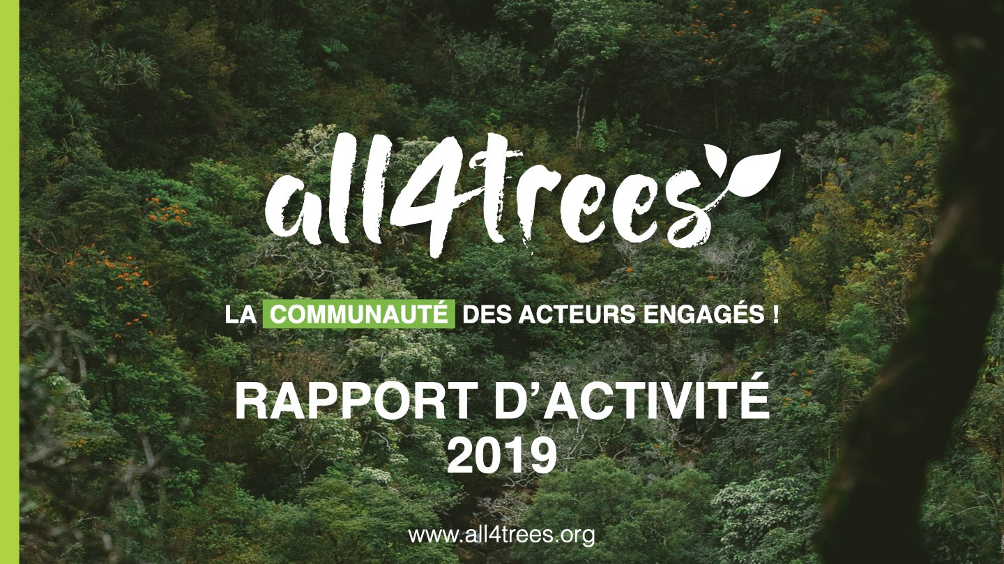 rapport activite all4trees 2019