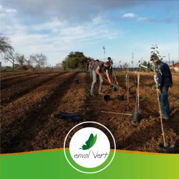 🇫🇷 France – Projet d'agroforesterie dans le Tarn